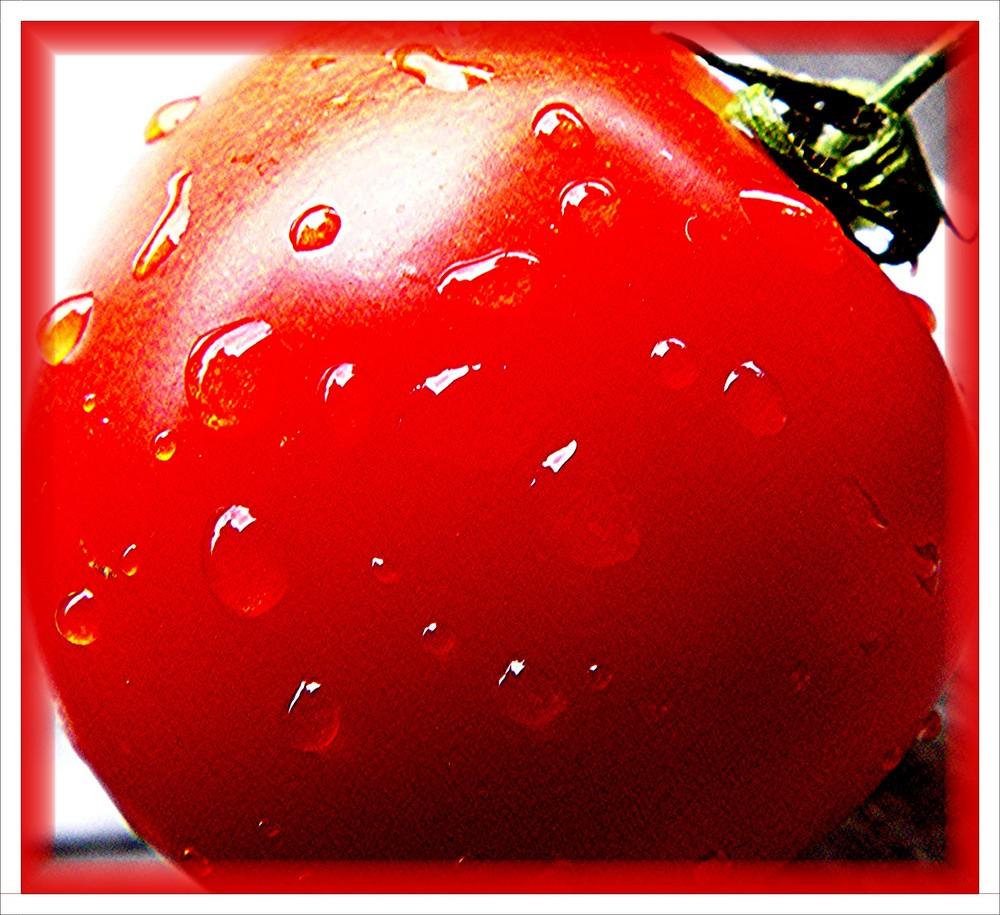 Natur pur: Tomate
