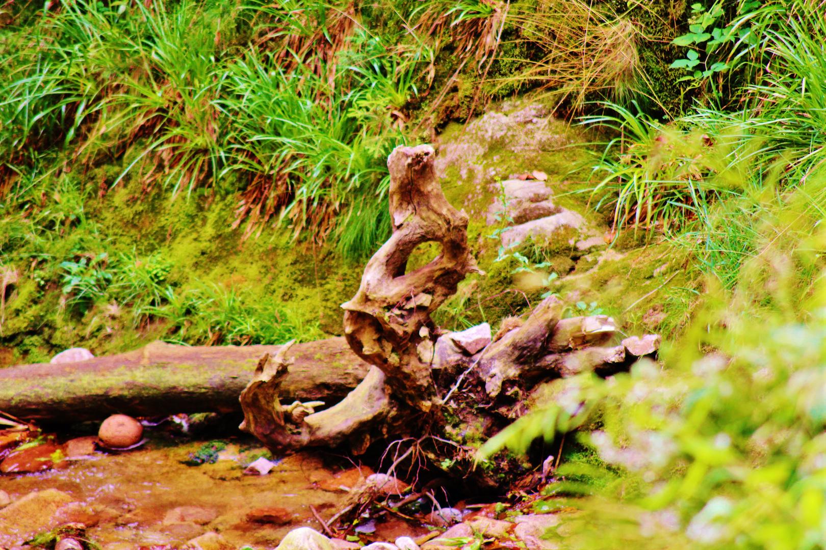 Natur-Skulptur