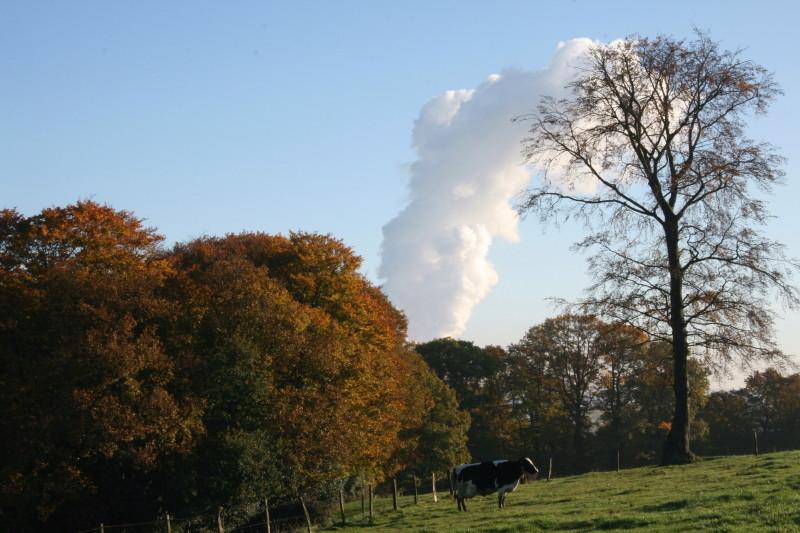 Natur und Kohlekraftwerk..
