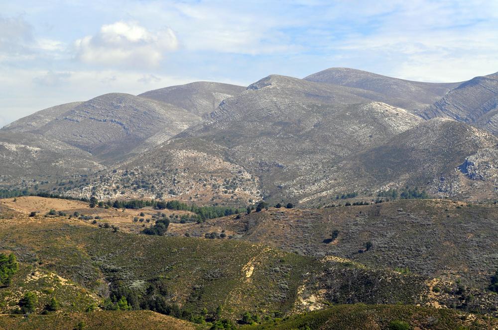Natur und Landschaft auf Rhodos (3)