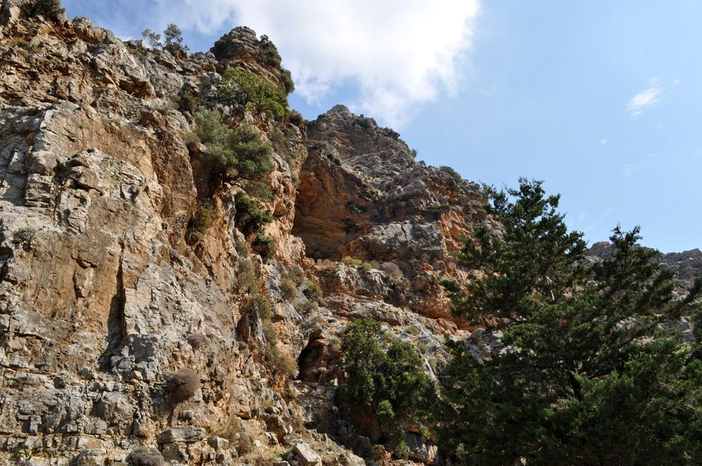 Natur und Landschaft auf Rhodos (8)