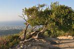 Natur und Landschaft auf Rhodos(1)