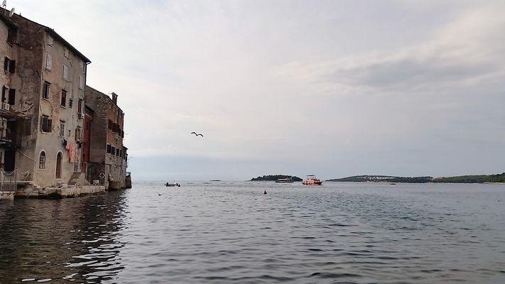 Natur und Venedig