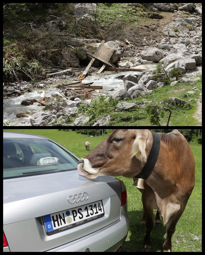 Natur vs. Technik....