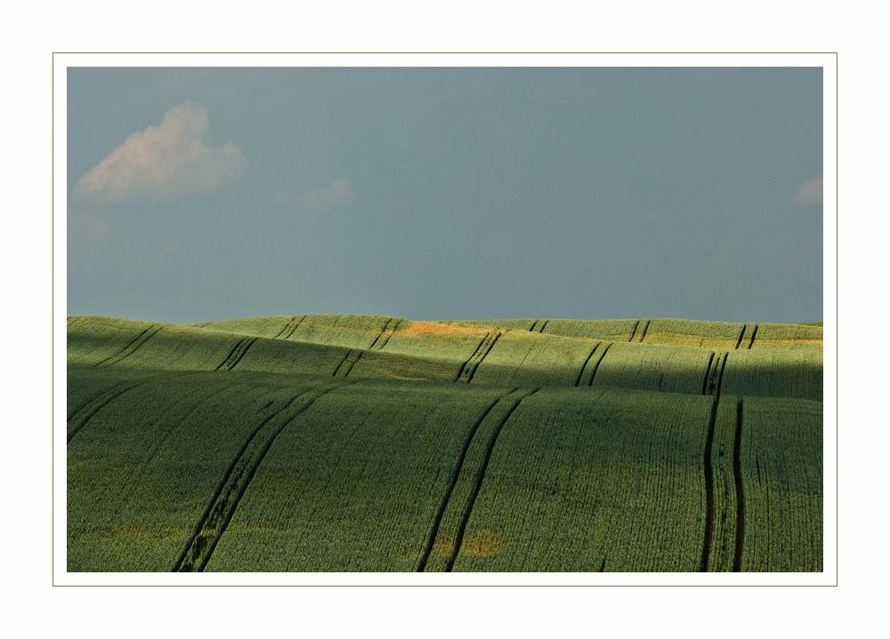 natural lines II