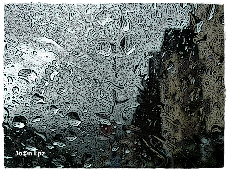 Naturaleza callejera, lluvia