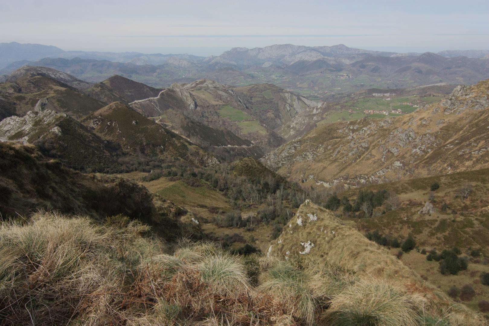 naturaleza de excepción entre bosques y montañas
