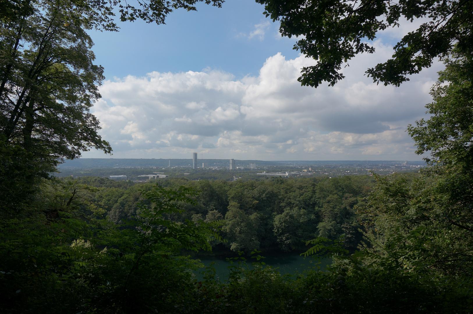 Nature Bonn