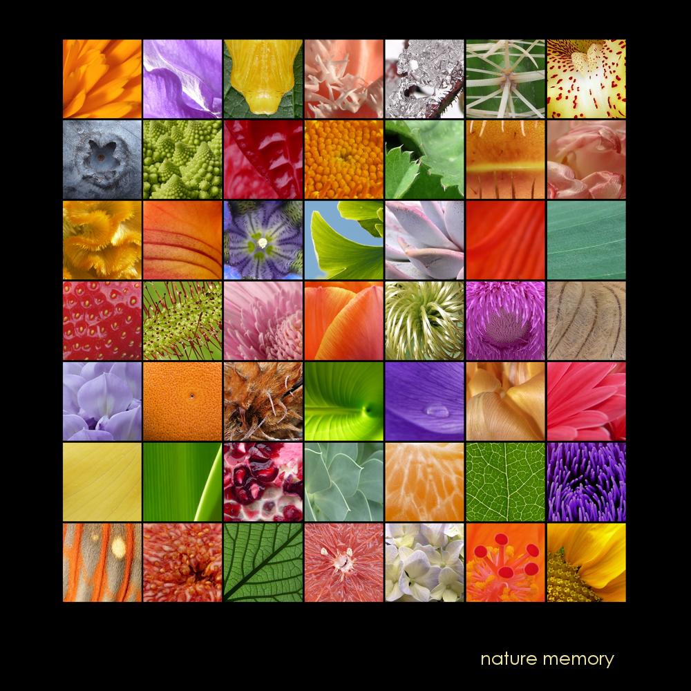 . nature memory .