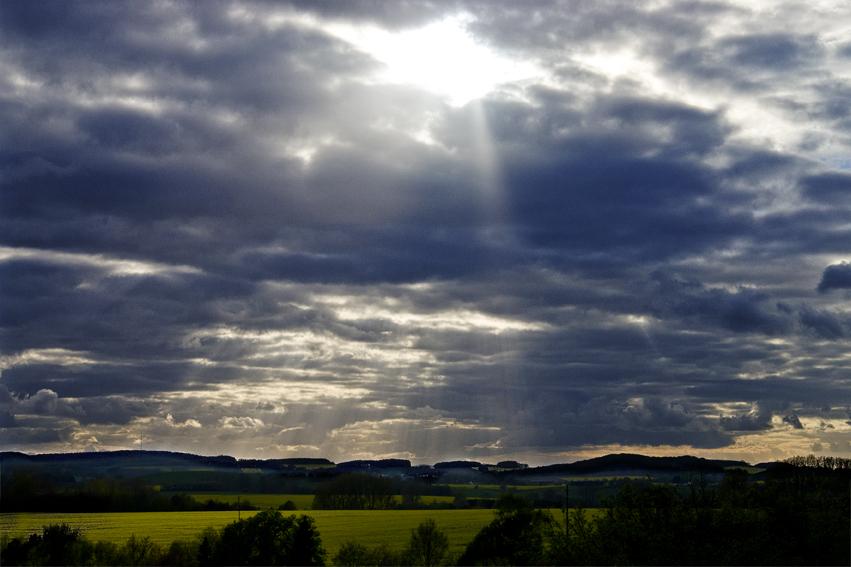 Nature paints light