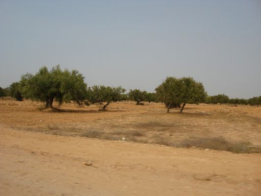 Nature Sauvage, entre Village et Désert