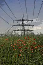 Nature VS. Industrie