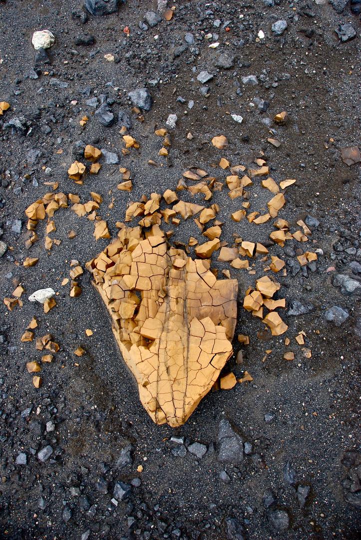 nature's broken heart