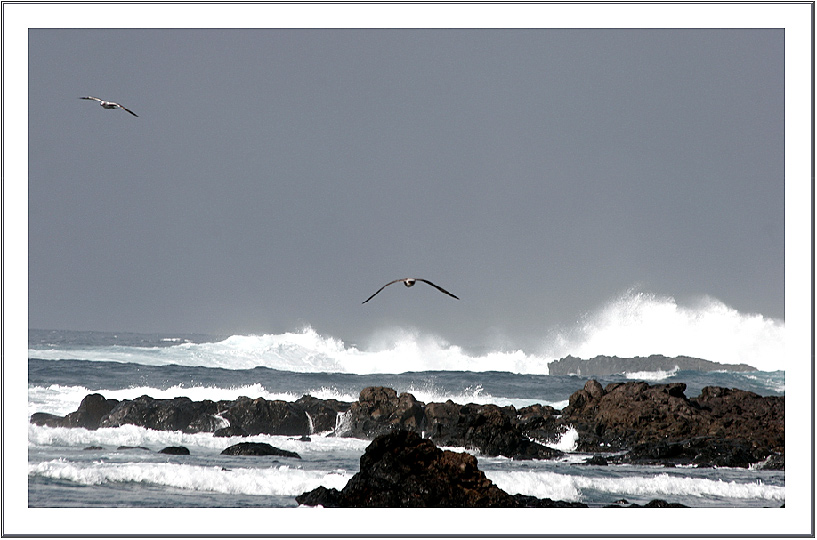 Naturgewalt Atlantik