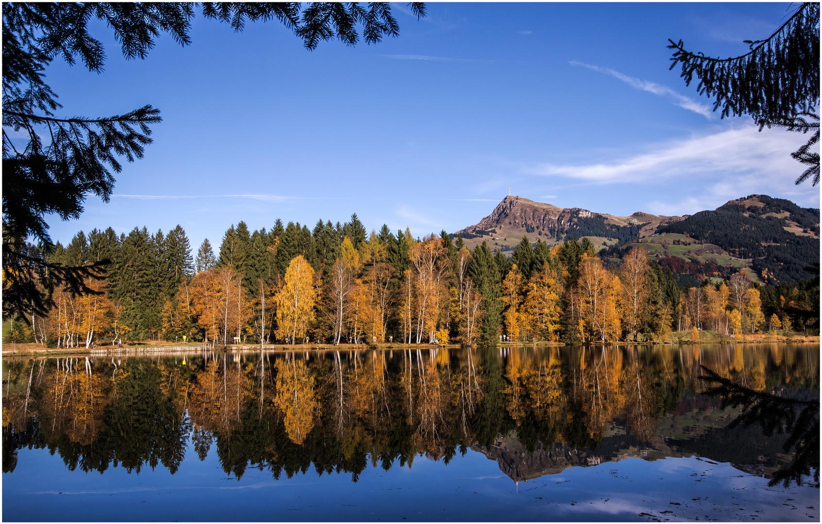 Naturjuwel Schwarzsee