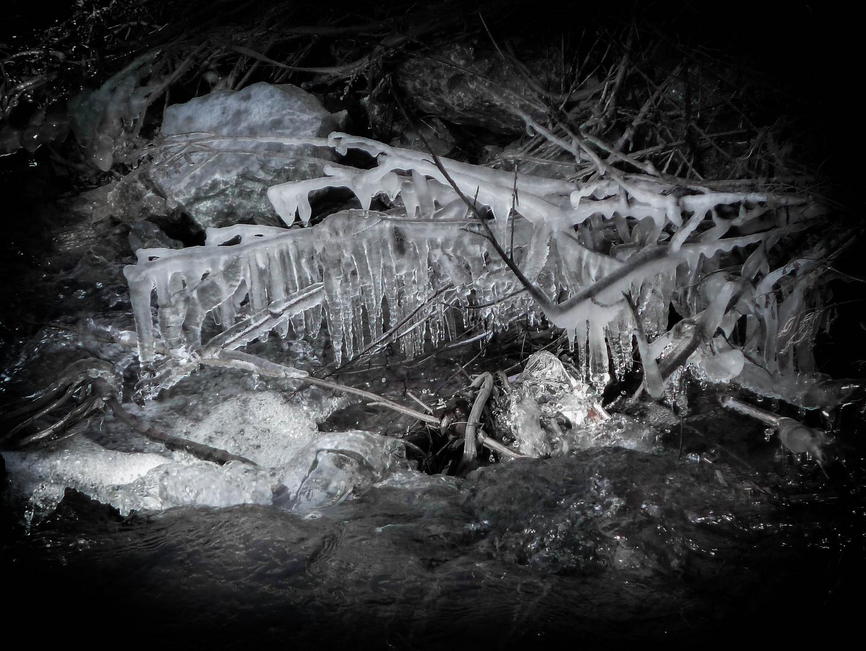 Naturkunst - Eiszapfen