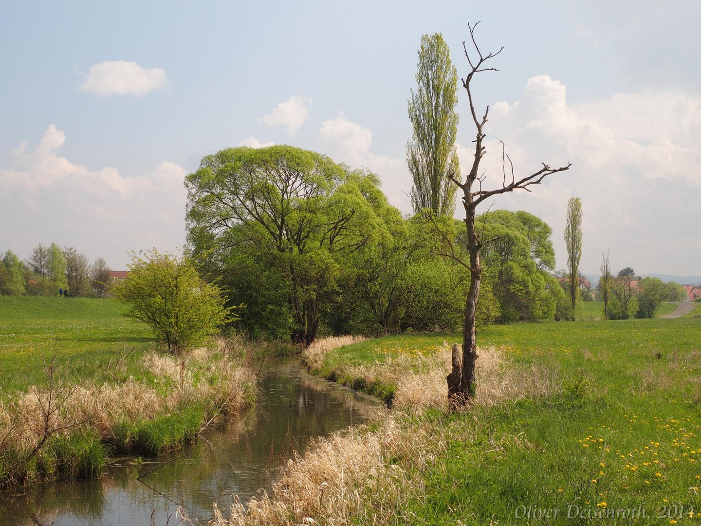 Naturlandschaft Schwalmstadt