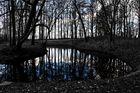 Naturmuster gespiegelt