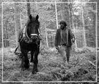 Naturnahe Waldarbeit