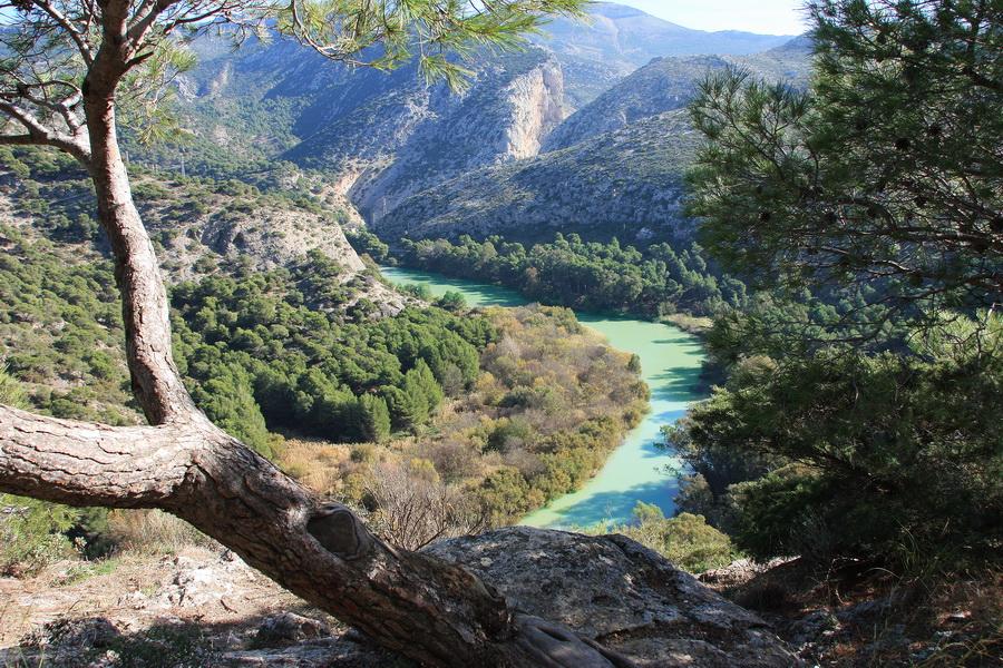 Naturpark Desfiladero des los Gitanes, Ardales, Spanien (2)