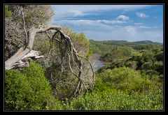 Naturpark Es Grau, Menorca