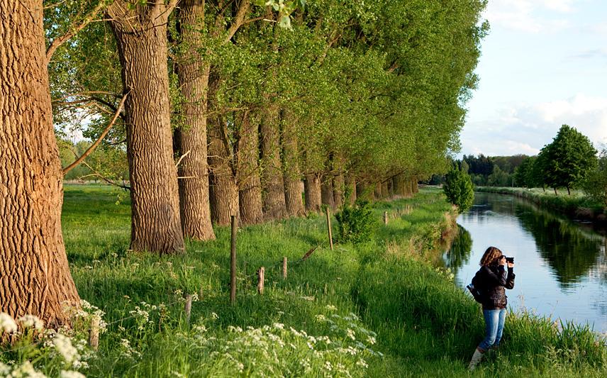 Naturpark Schwalm-Nette | Fotoworkshop Naturfotografie - Wasserblicke