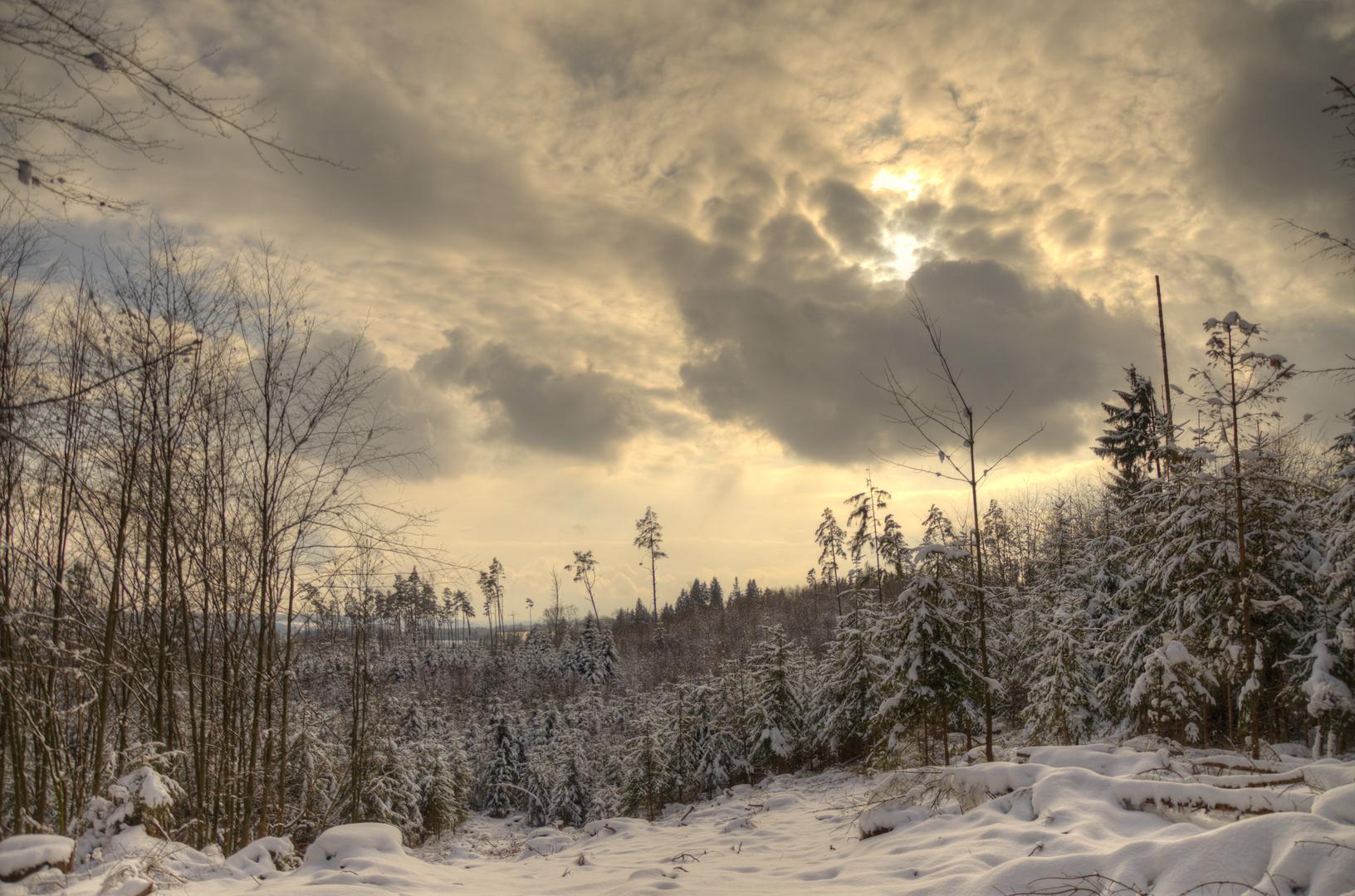 Naturpark Westliche Wälder