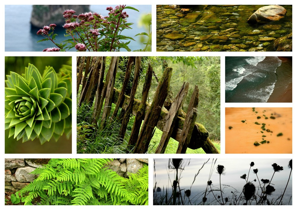 Natur.....pur