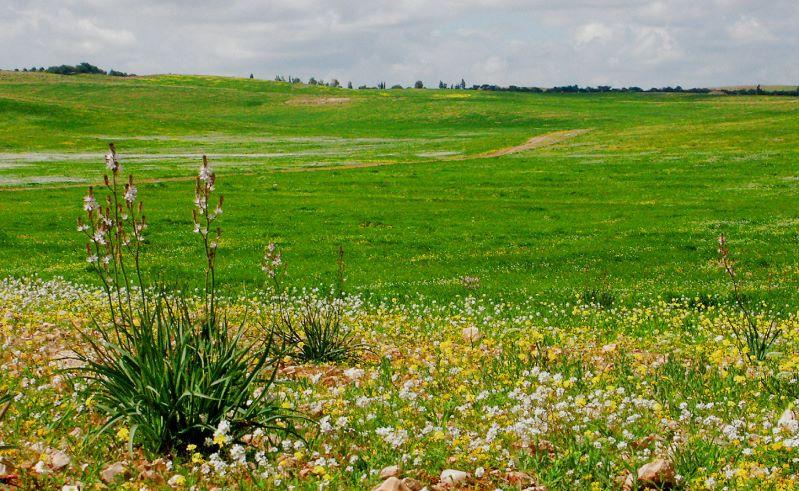Naturreservate in Jordanien ...3