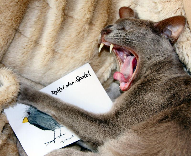 - Naturschutz hört beim Tier nicht auf -