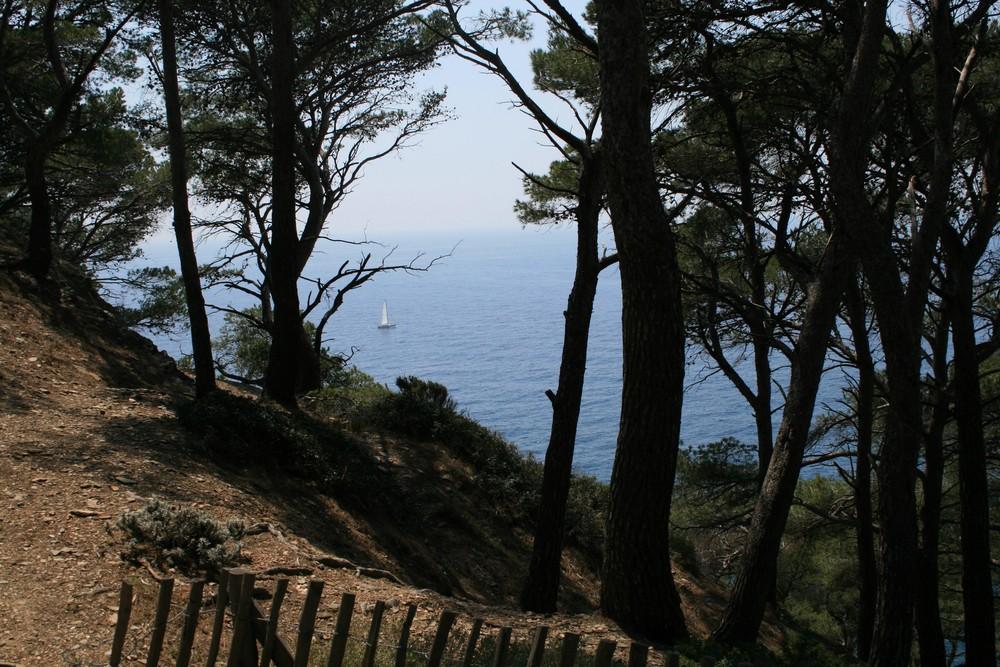 Naturschutzgebiet am Meer 2