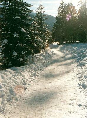 Naturschutzgebiet Berchtesgardener Land