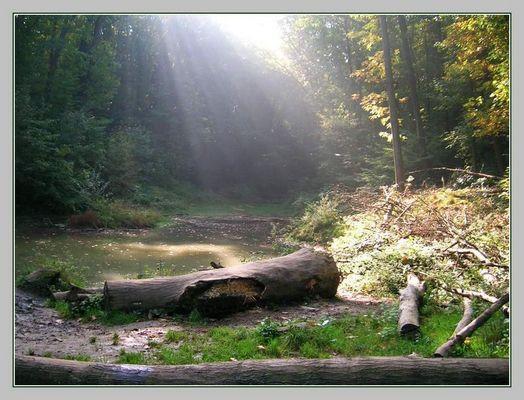 Naturschutzgebiet Bolmke