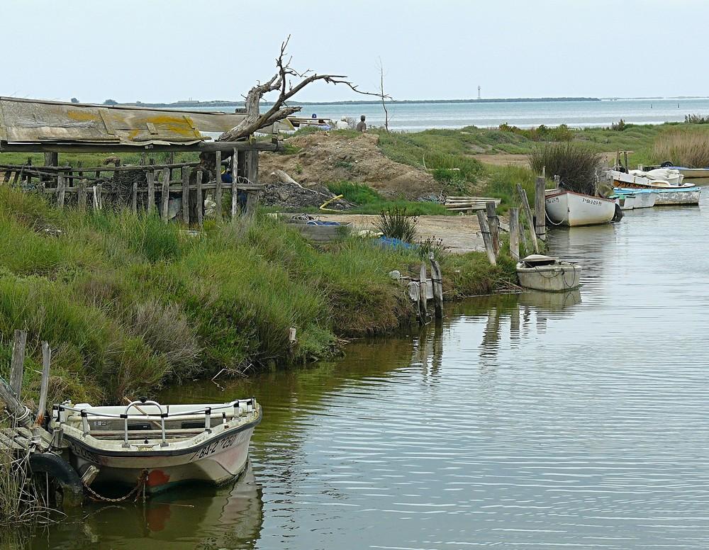 Naturschutzgebiet Ebro Delta in Katalonien