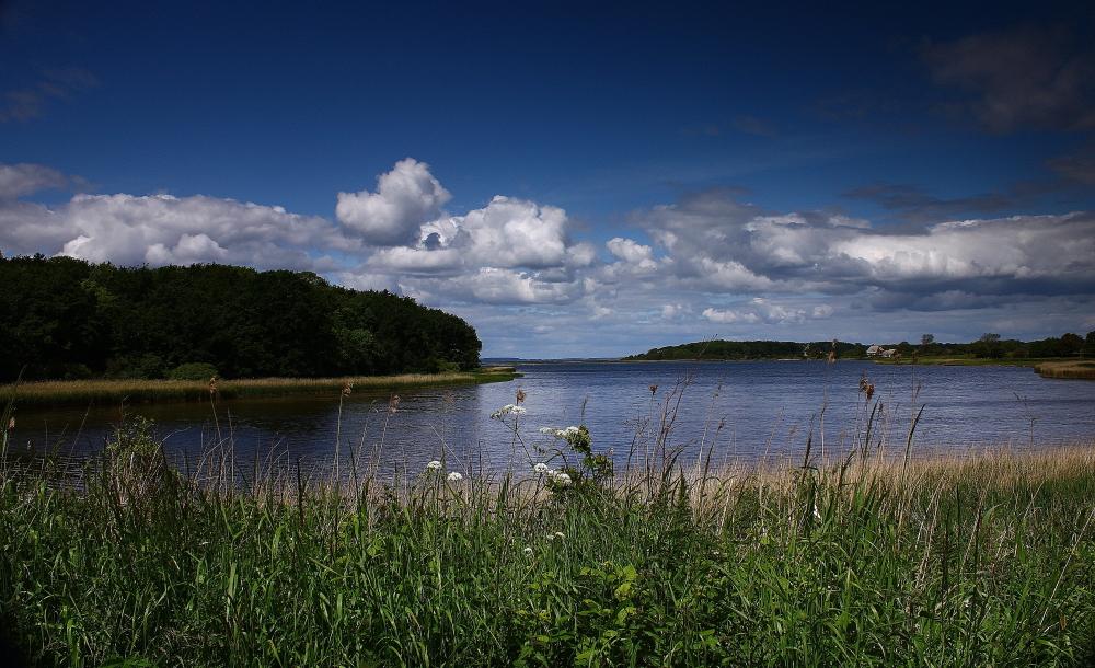 Naturschutzgebiet Geltingerbucht