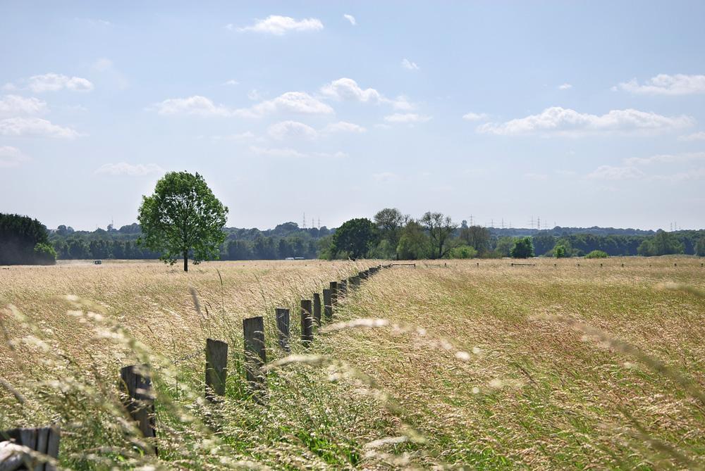 Naturschutzgebiet in Schwerte