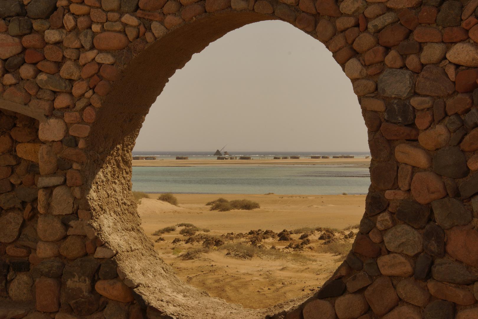 Naturschutzgebiet Nabq 2013