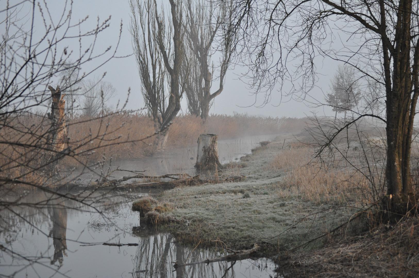 Naturschutzgebiet Neerach