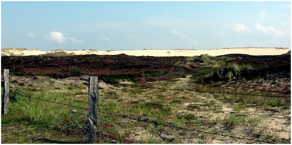 """Naturschutzgebiet """" Wanderdünen """""""