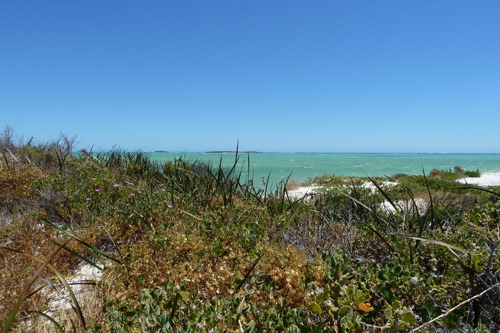 Naturstand Western-Australia