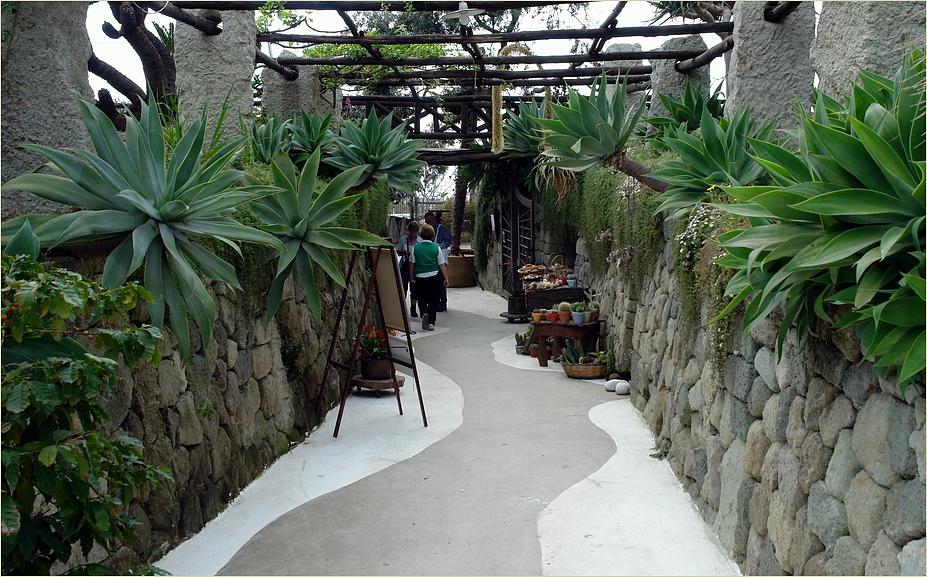 Naturstein - Mauern ...