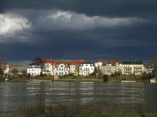Naturstimmung im Hochwassergebiet