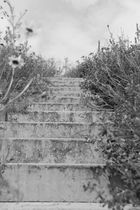 Naturtreppe