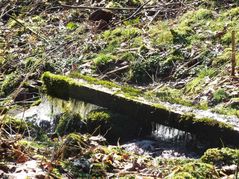 Naturwasserrinne