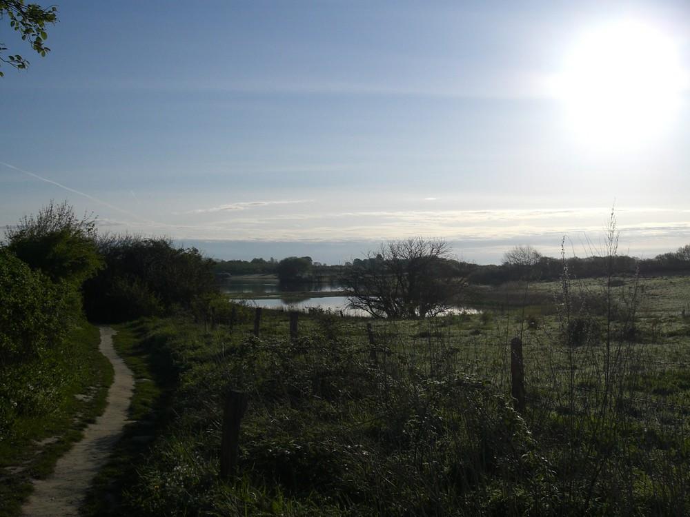 Naturweg