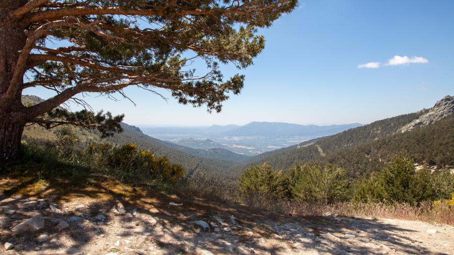 Navacerrada - Blick ins Tal