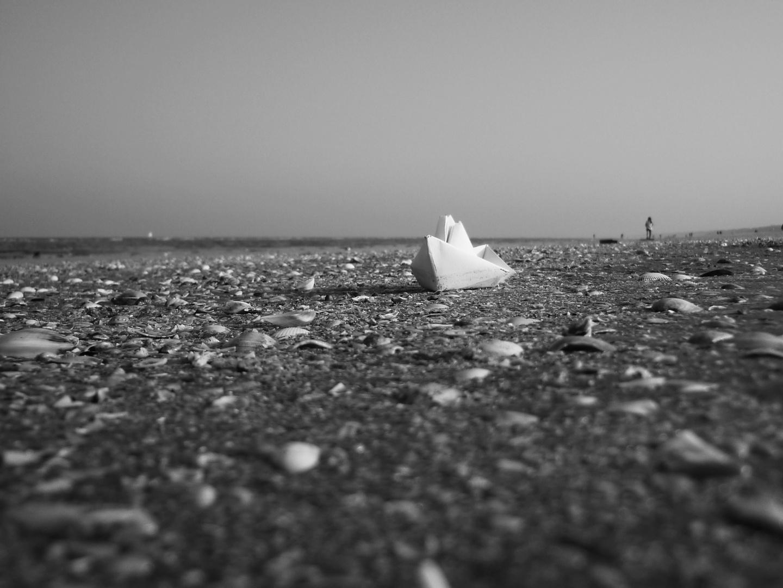 Nave bianca arenata