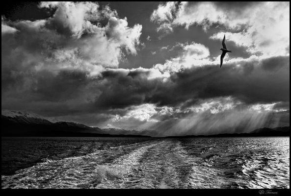 Navegando el Canal de Beagle