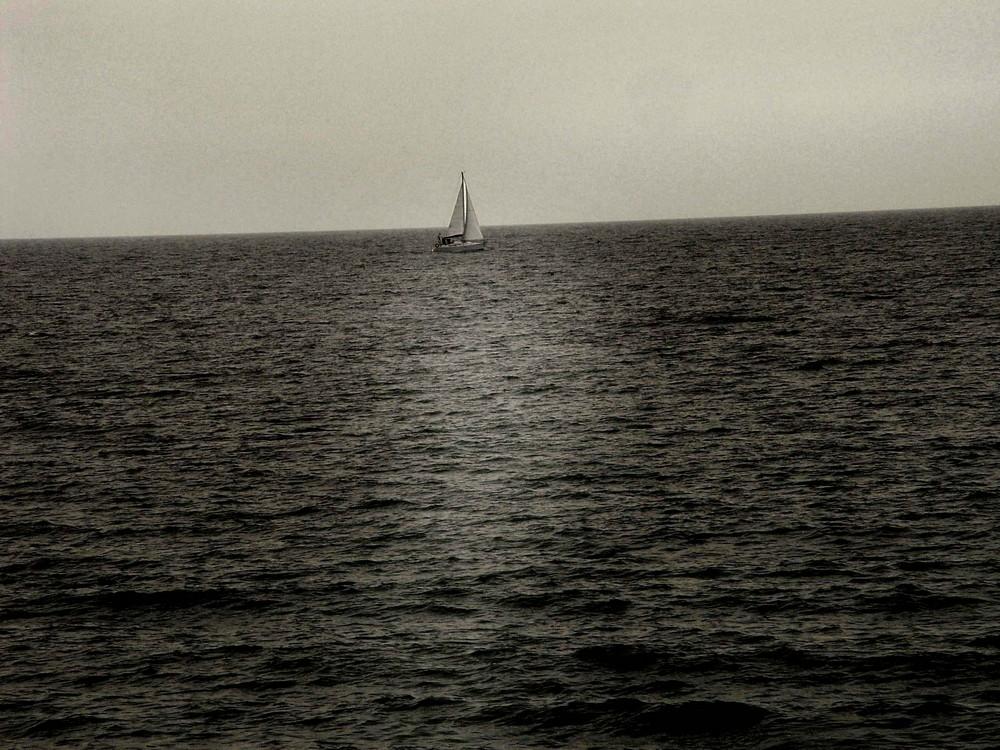 navegant solitari