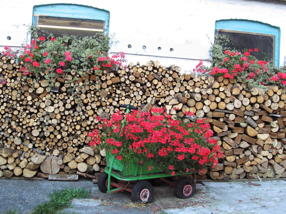 'ne Menge Holz vor der Tür......................